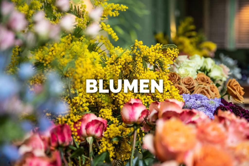 Bloomer's Blumen